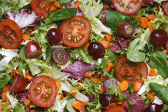 Fresh salad background Stock Images