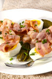 Fresh salad with bacon, chive and egg. Fresh salad with bacon, gherkin and egg stock images