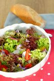 Fresh salad with baguette Royalty Free Stock Photography