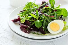 Fresh salad with beetroot, mix leaves, olive oil, egg and sesame seeds royalty free stock photography