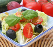 Fresh salad with black olives Stock Photos