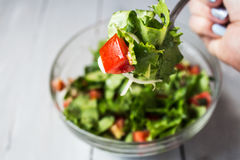 Fresh salad bowl with fork Royalty Free Stock Photography