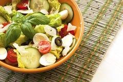 Fresh salad in  bowl. Healthy food. Stock Photos