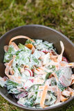 Fresh salad in bowl. Fresh salad with salad leafs, carrots and radish in bowl Royalty Free Stock Images