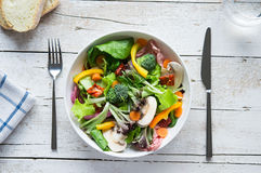 Fresh salad bowl Stock Photography