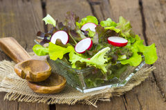 Fresh salad in a bowl Stock Photography