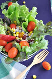 Fresh salad bowl with wooden fork Royalty Free Stock Image