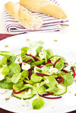 Fresh salad with bread. Royalty Free Stock Photos