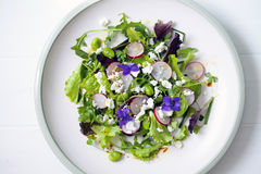 Fresh salad with broad beans, radish and violets. Spring salad with broad beans, radish and violets Stock Image