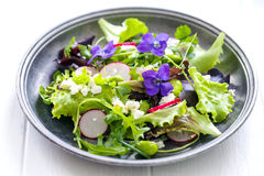 Fresh salad with broad beans, radish and violets. Spring salad with broad beans, radish and violets Royalty Free Stock Image