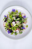 Fresh salad with broad beans, radish and violets. Spring salad with broad beans, radish and violets Stock Photo