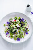 Fresh salad with broad beans, radish and violets. Spring salad with broad beans, radish and violets Royalty Free Stock Photos