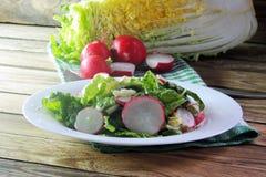 Fresh salad with cabbage and radish. Fresh vegetables salad with cabbage  and radish Stock Photography