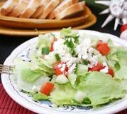 Fresh salad with cheese. A fresh salad with cheese and paprika Royalty Free Stock Photos