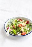 Fresh salad with cherry tomatoes, arugula, radish and cucumber in an enamel plate Royalty Free Stock Image