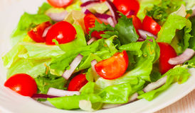 Fresh salad with cherry tomatoes Stock Photography