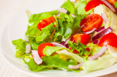 Fresh salad with cherry tomatoes Stock Photos