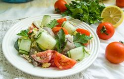 Fresh salad with chicken leaver. And tomato, cucumber and liver stock images