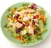 Fresh salad with chicken meat Royalty Free Stock Image