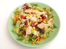 Fresh salad with chicken meat Stock Image