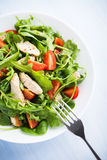 Fresh salad with chicken, tomato and greens (spinach, arugula) Royalty Free Stock Images