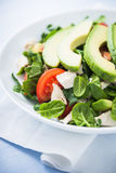 Fresh salad with chicken, tomatoes, spinach and avocado on blue wooden background close up Stock Photo