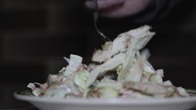 Fresh salad with chicken and vegetables stock footage