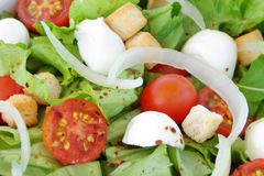 Fresh salad close-up. Delicious diet salad close-up Royalty Free Stock Photo