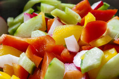 Fresh salad. A close up of a fresh salad with peppers cucumber and radish Royalty Free Stock Image