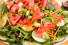 Fresh Salad Closeup Stock Image