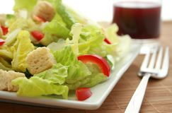 Fresh Salad with Crouton. Fresh green salad with croutons on a white plate royalty free stock photo