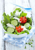 Fresh salad with cucumber Royalty Free Stock Photo