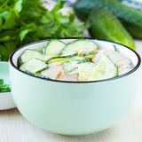 Fresh salad with cucumber, pork meat, sour cream, yogurt, health Stock Photos