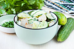 Fresh salad with cucumber, pork meat, sour cream, yogurt, health Stock Image