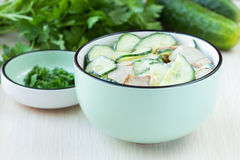 Fresh salad with cucumber, pork meat, sour cream, yogurt, health Royalty Free Stock Photo