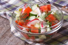 Fresh salad with cucumber, radish and tomatoes Stock Photography