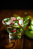 Fresh salad with cucumber and radish. On a wooden table Royalty Free Stock Photo