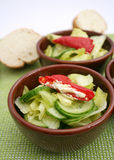 A fresh salad of cucumbers Stock Photography