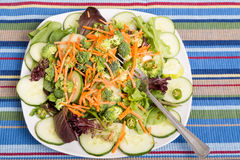 Fresh Salad with Cucumbers and Peppers Royalty Free Stock Photos