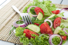 Fresh salad with cucumbers tomatoes onions Stock Images