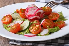 Fresh salad of cucumbers, tomatoes, radishes and green onion. On a plate. close up horizontal Stock Photos