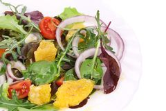 Fresh salad with cumin. Stock Photography