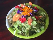 Fresh salad with edible flowers. Healthy green salad with edible flowers on wooden table stock images