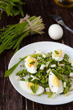 Fresh salad with egg and greens. Food Royalty Free Stock Images