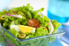 Fresh Salad with Egg Royalty Free Stock Photo