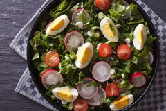 Fresh salad with egg, radishes and herbs horizontal top view. Fresh salad with egg, radishes and sorrel close up on the table. Horizontal top view royalty free stock images