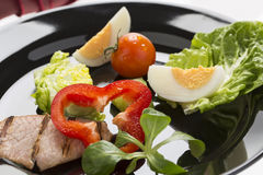 Fresh salad with egg, and roasted bacon, rich in vitamins, on th Stock Images