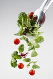 Fresh salad falling from a clamp Royalty Free Stock Photography
