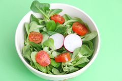 Fresh salad. A fresh field salad with radish and tomatoes Stock Photography