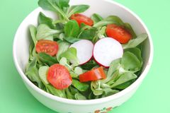 Fresh salad. A fresh field salad with radish and tomatoes Royalty Free Stock Photo
